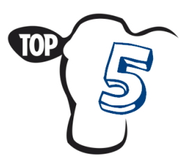 Klausytojų TOP 5