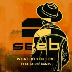 SeeB feat. Jacob Banks - What Do You Love