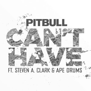 Pitbull feat. Steven A Clark & Ape Drums cant have