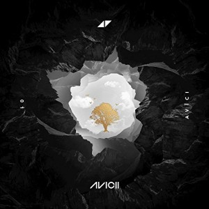 Avicii feat. Sandro Cavazza without you